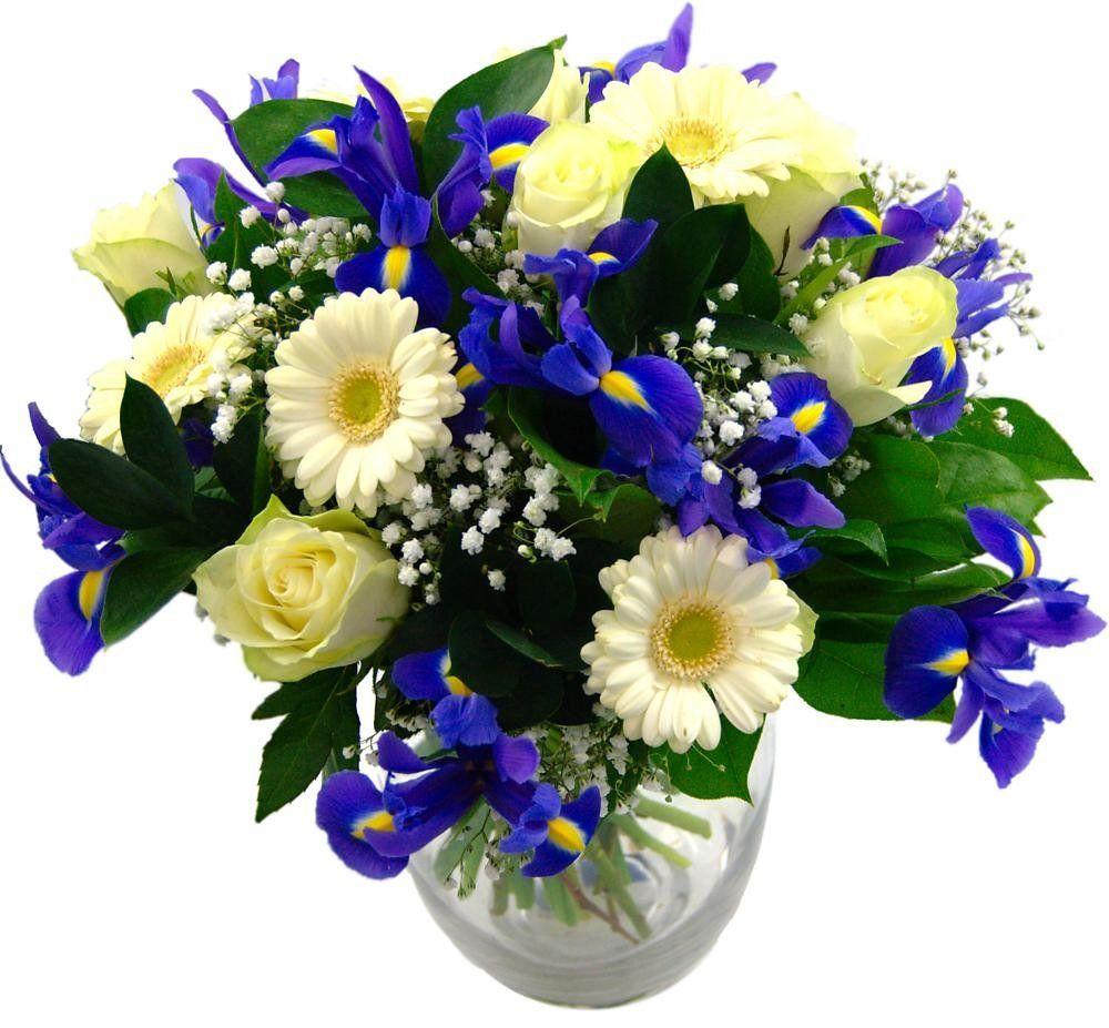 Clare florist baby boy flowers bouquet fresh blue iris white clare florist baby boy flowers bouquet fresh blue iris white roses and gerbera to izmirmasajfo