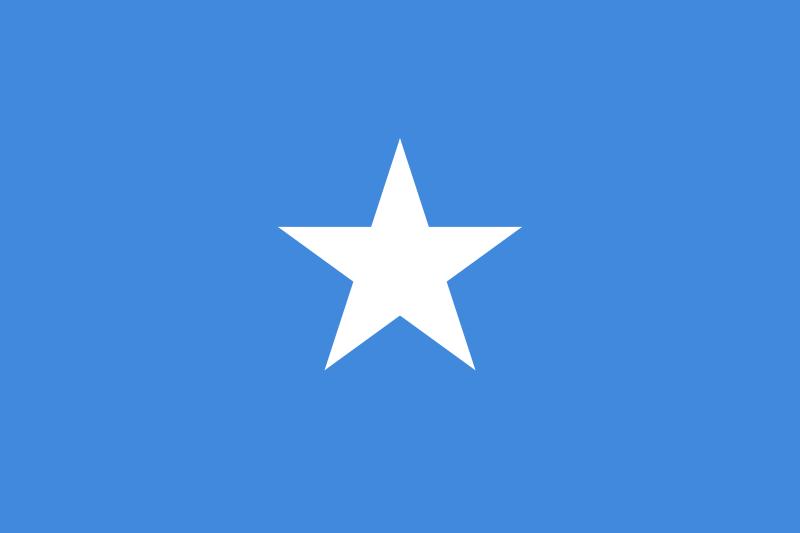 Novelty Somalia Somalian Flag Country National Photo Fridge Magnet.