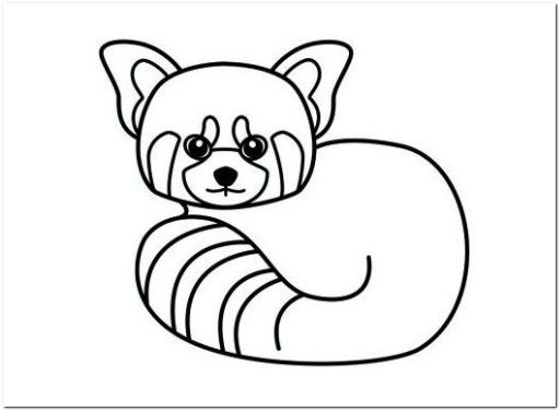 red panda coloring pages baby red panda coloring page | Coloring Board | Pinterest  red panda coloring pages