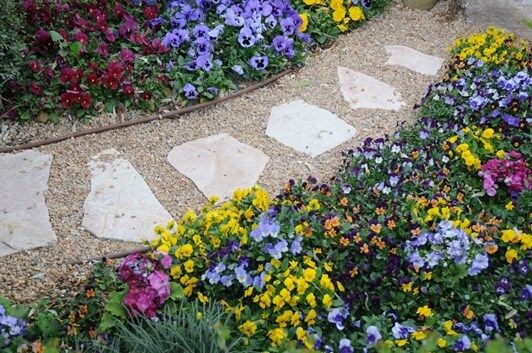 Photo of The Perfect Garden Path