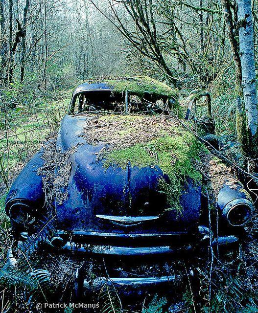 Best 25 Automobile Ideas On Pinterest: Best 25+ Abandoned Cars Ideas On Pinterest