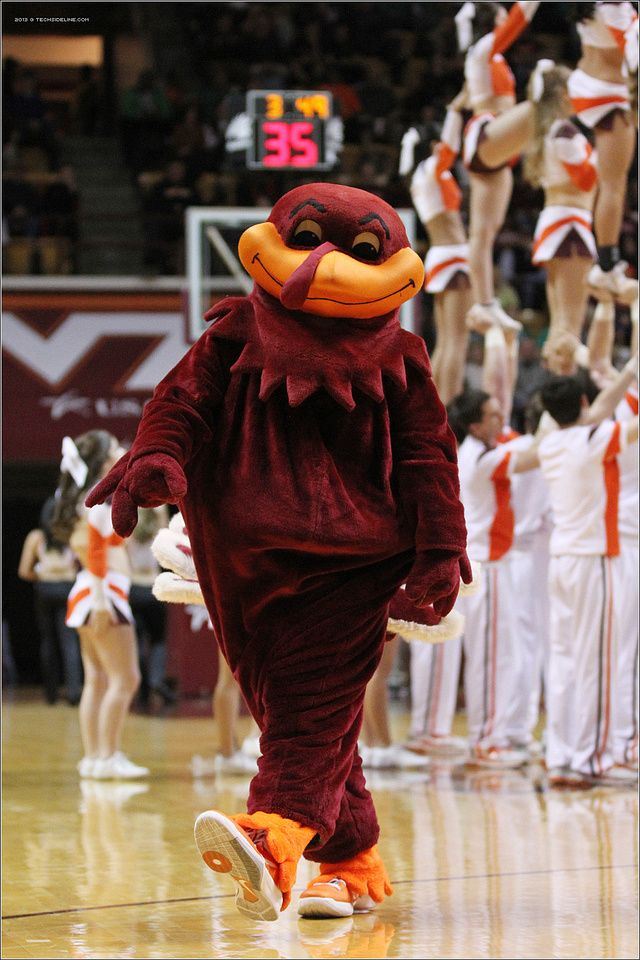 Hokie Bird. 2013.03.02. Clemson University (Tigers) at