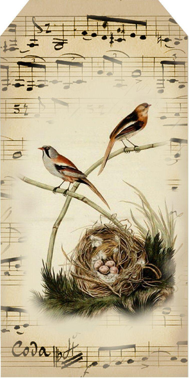 Free Printables Vintage Bird Inspired Tags Vintage Birds Tag Art