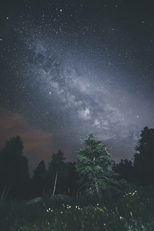 Milkyway In The Wilderness Ponderation Night Sky Photography Sky Photography Photo
