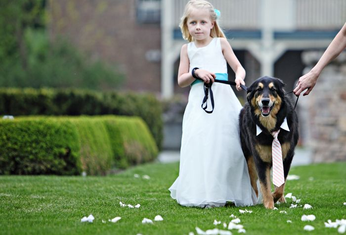 Lake Geneva Wedding Flower Girl And Dapper Dog Wedding Modern
