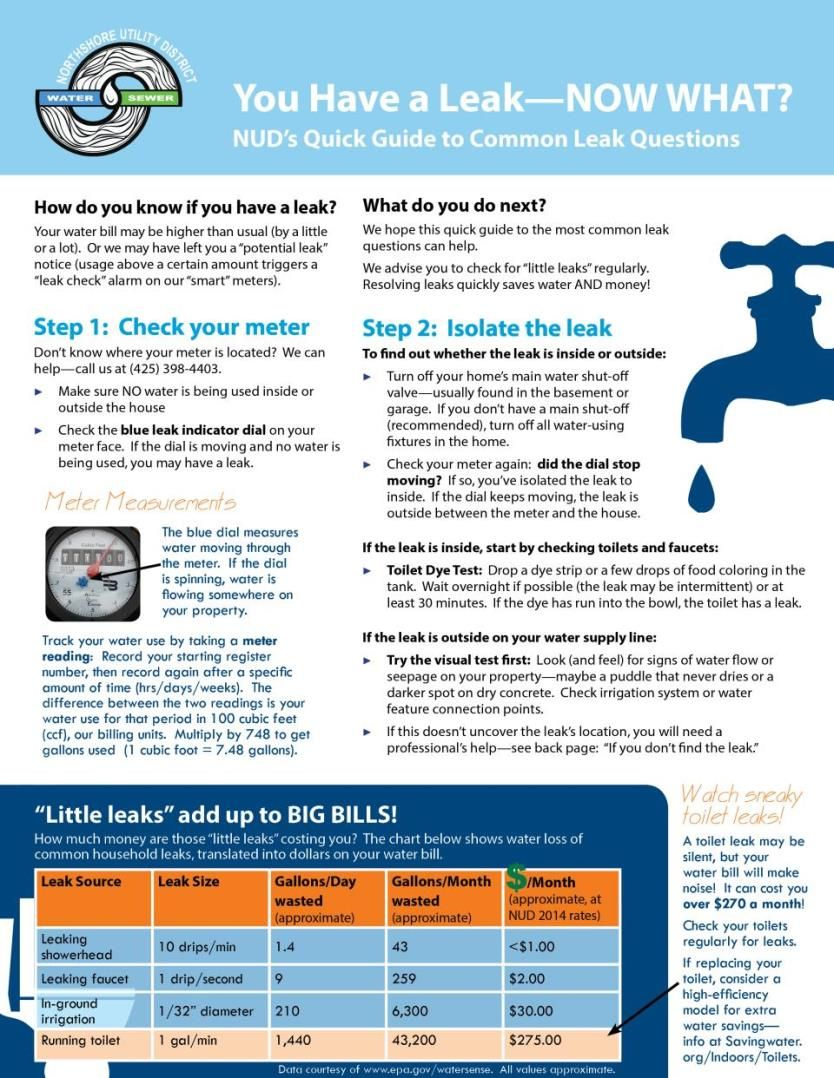 Northshore Utility District Leak Quick Guide Leaks Quick Guide Guide