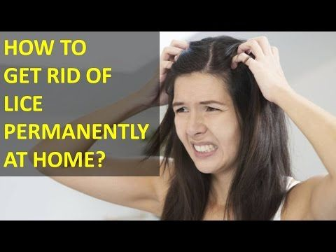 How To Get Rid Of Lice And Nits Naturally