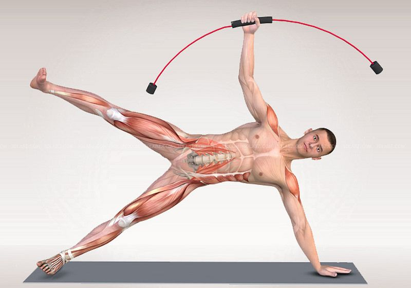 Flexi-Bar Anatomie 3D | Bar workout and Workout