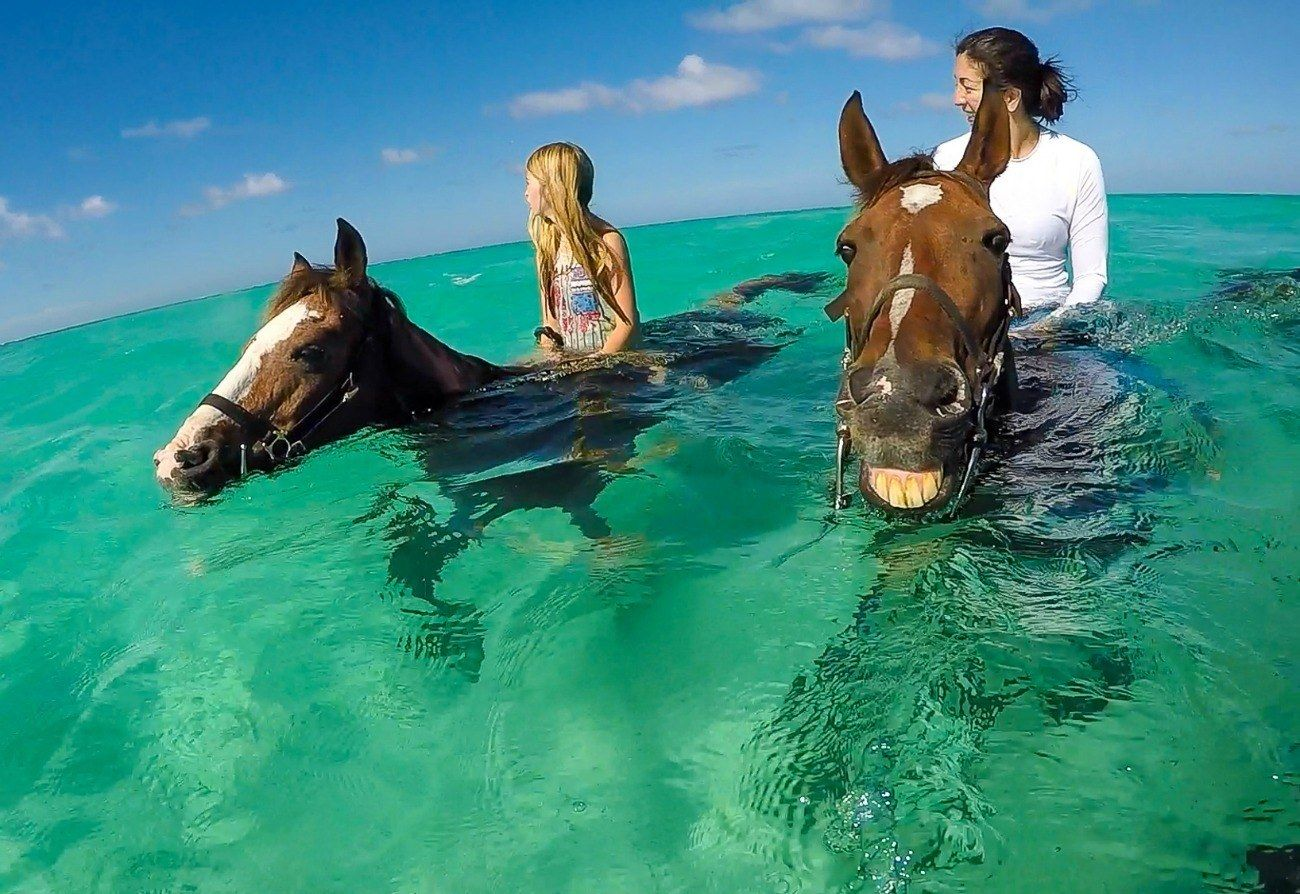 What It S Like To Ride Swimming Horses In Grand Cayman Grand Cayman Island Grand Cayman Cayman Islands Resorts
