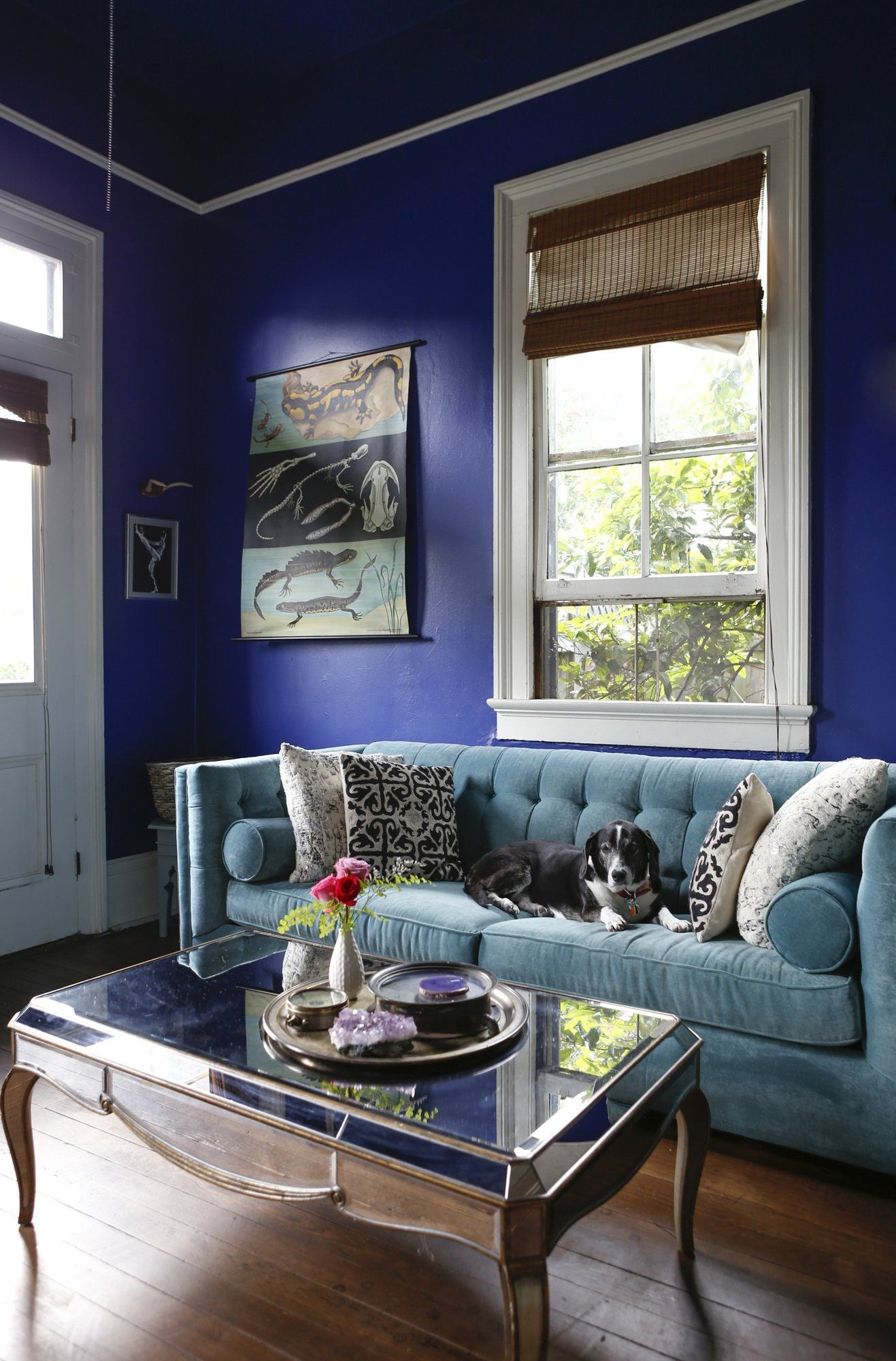 How To Decorate With Jewel Tones Living After Midnite Li