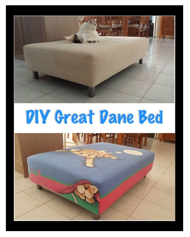 Struggled To Find A Bed Suitable For My New Great Dane Coming Home