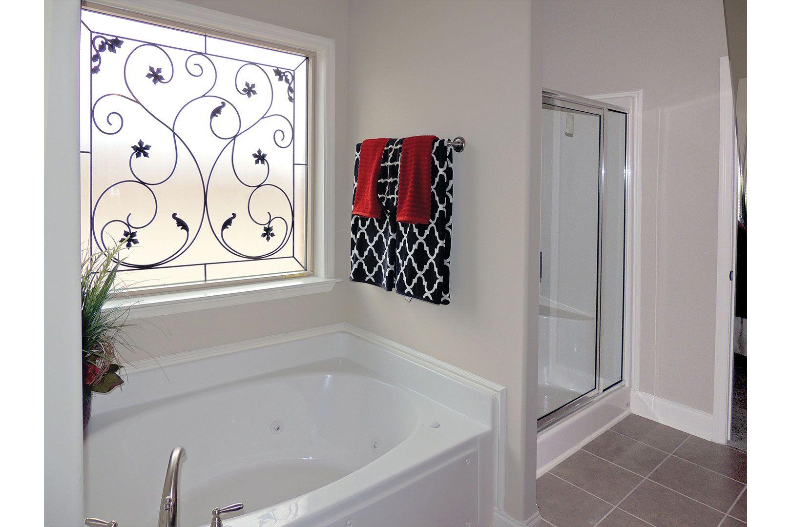 Hy Lite Decorative Glass Privacy Window In Master Bath. Wrought Iron  Brilliance Design With