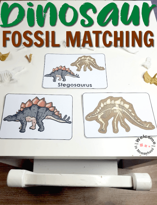 dinosaur activities fossil matching for kids for Montessori or kindergarten #dinosaurfossils