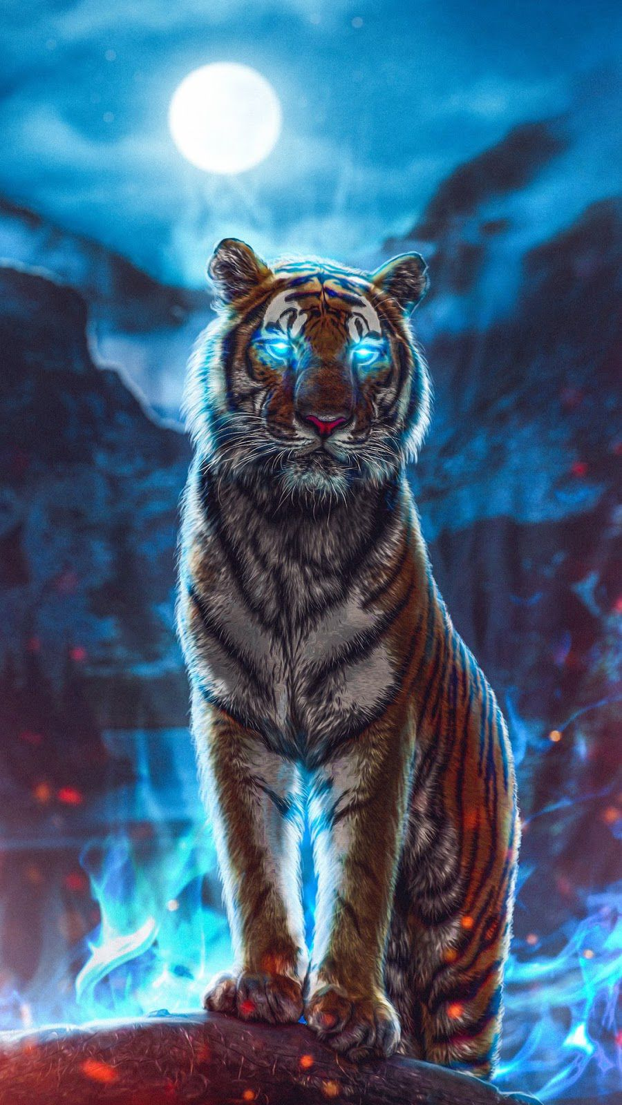 Animals Wallpapers Download Free Animals HD Wallpapers
