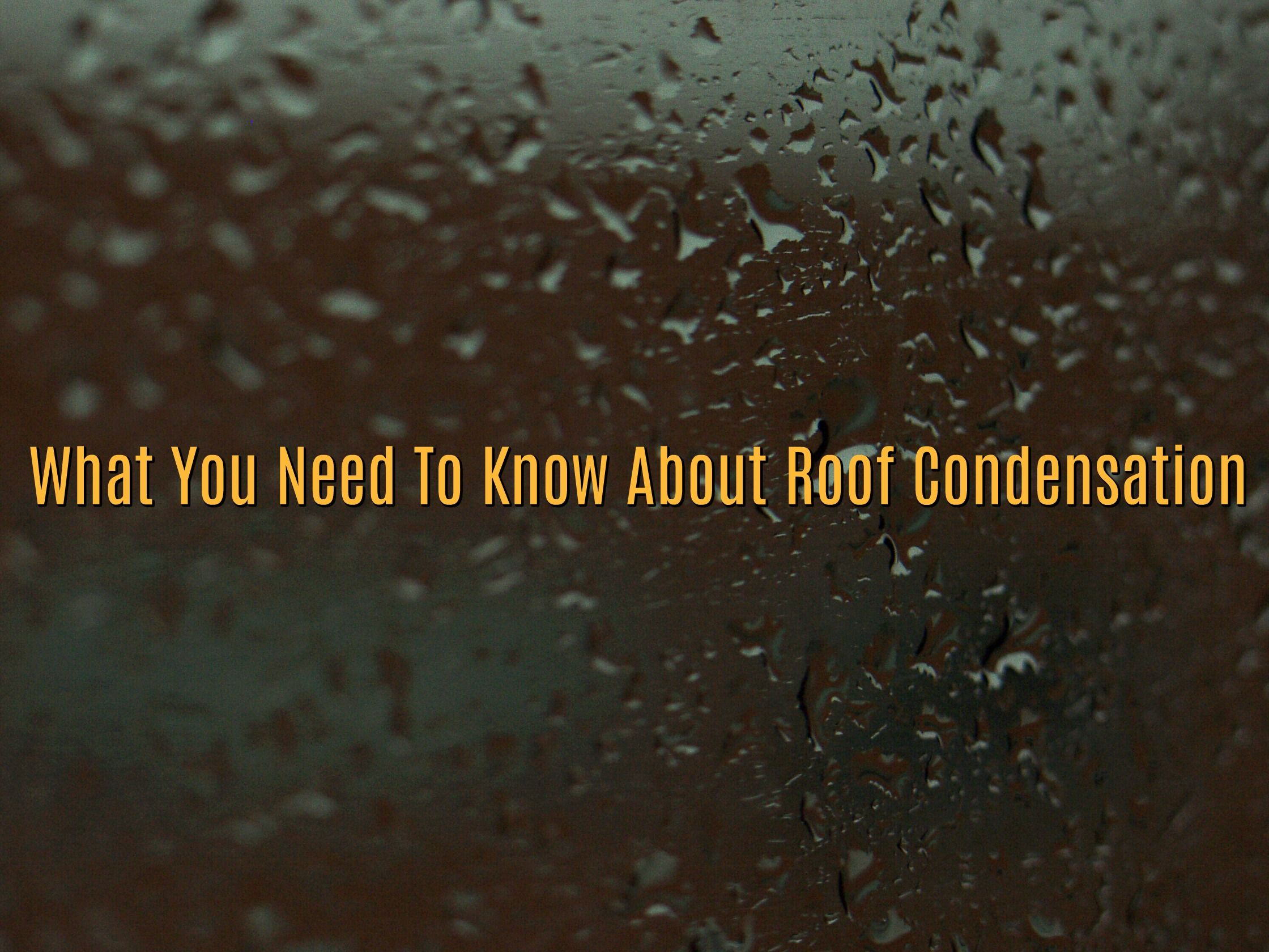 What You Need To Know About Roof Condensation Condensation Roof Need To Know
