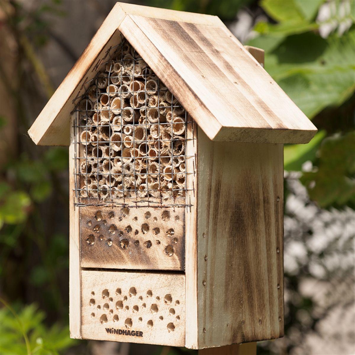 100 Fantastique Suggestions Petit Hotel A Insecte