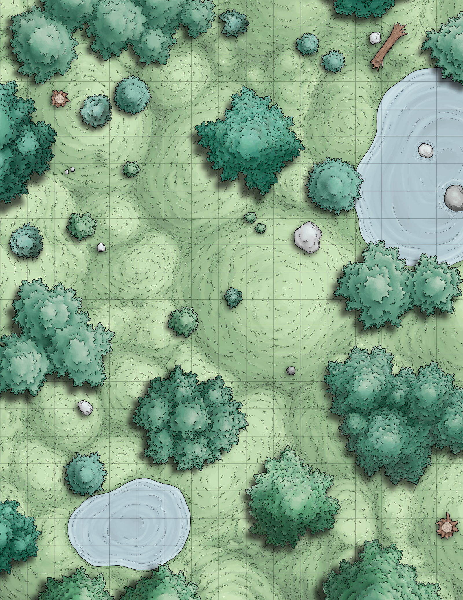 Forest Battle Map Assets | Fantasy map, Dungeon maps