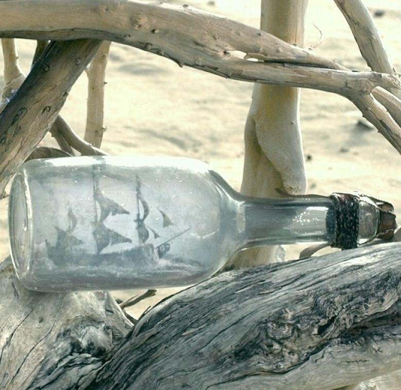 картинки черной жемчужины в бутылке украшения сада