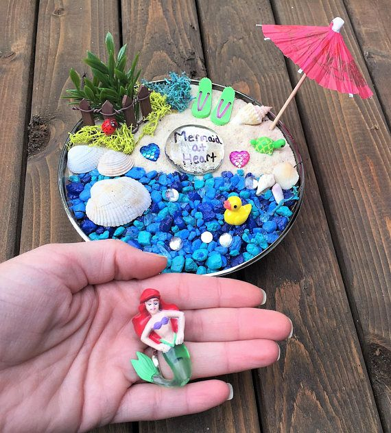 Mermaid Garden Kit Succulent Fairy Craft Birthday Party Gift