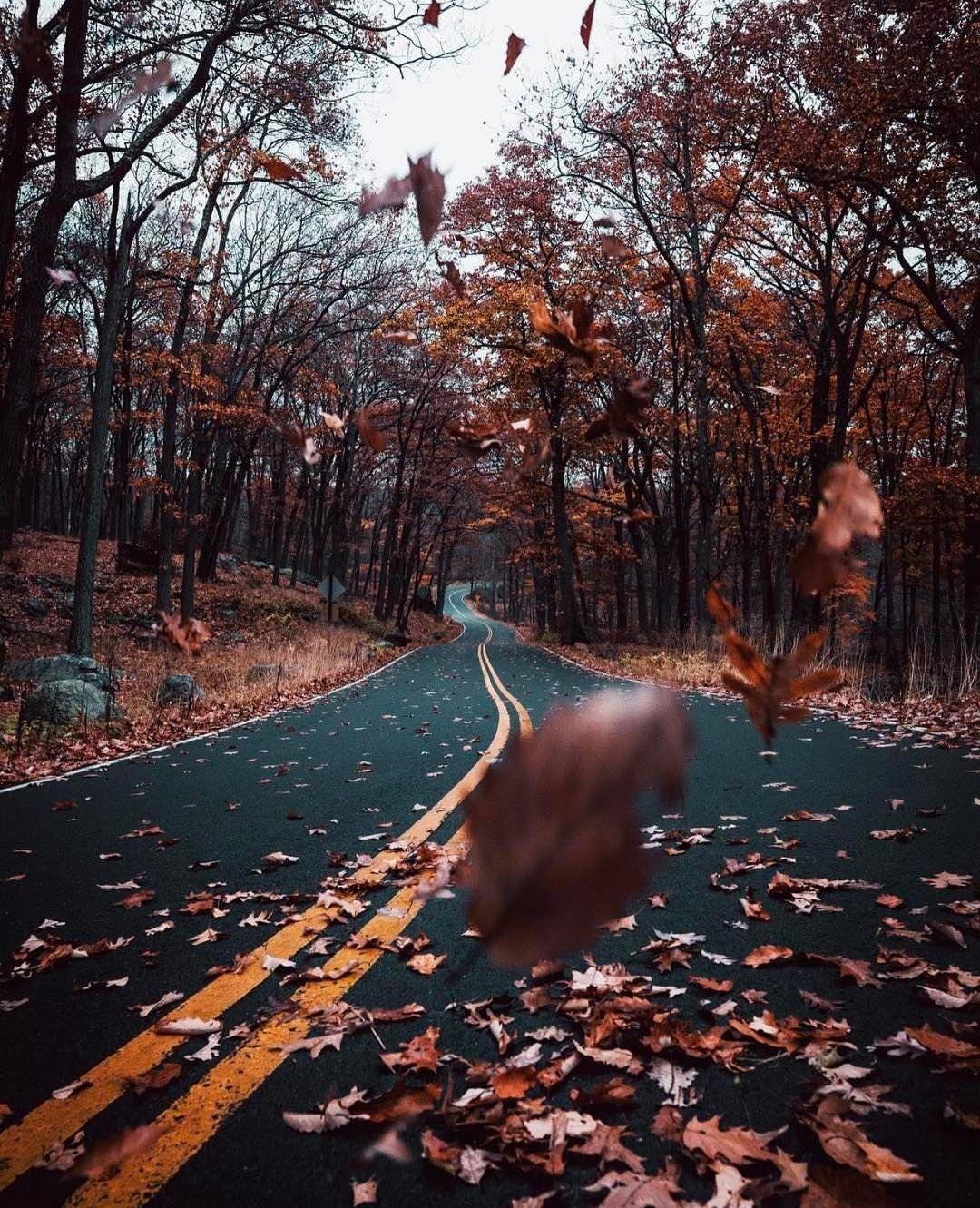Autumn Mood Tumblr Fotografia Paisaje Paisaje De Fantasia Fondos De Pantalla Otono