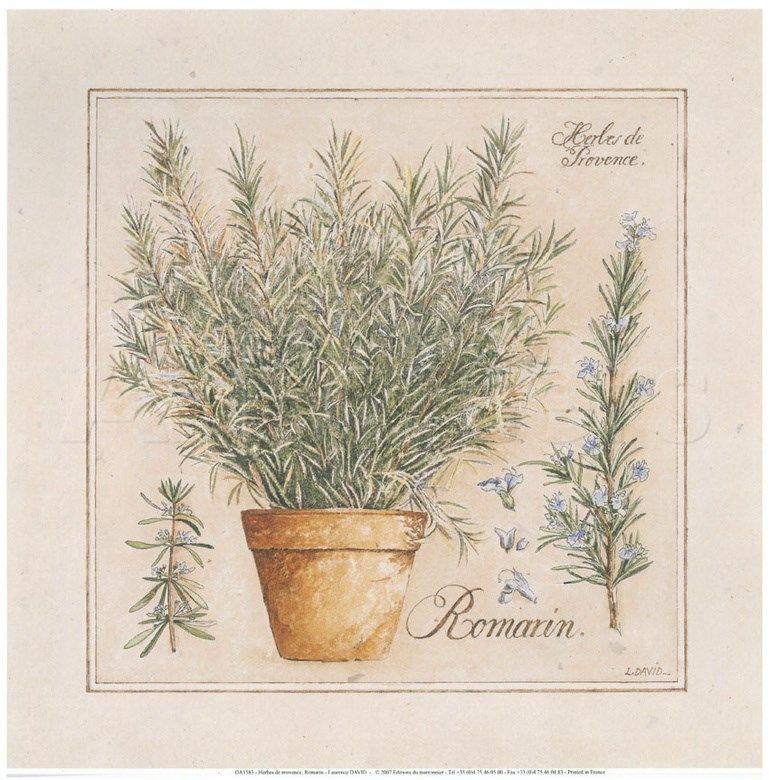 отзыв, картинки пряные травы для декупажа для кухни кирове