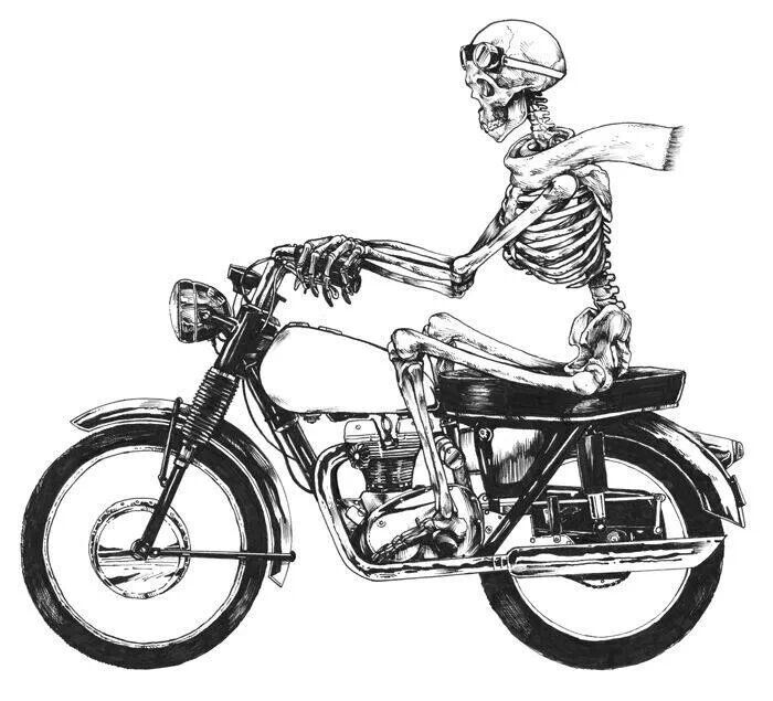 Image Result For Skeleton King Riding Motorcycle Lucky