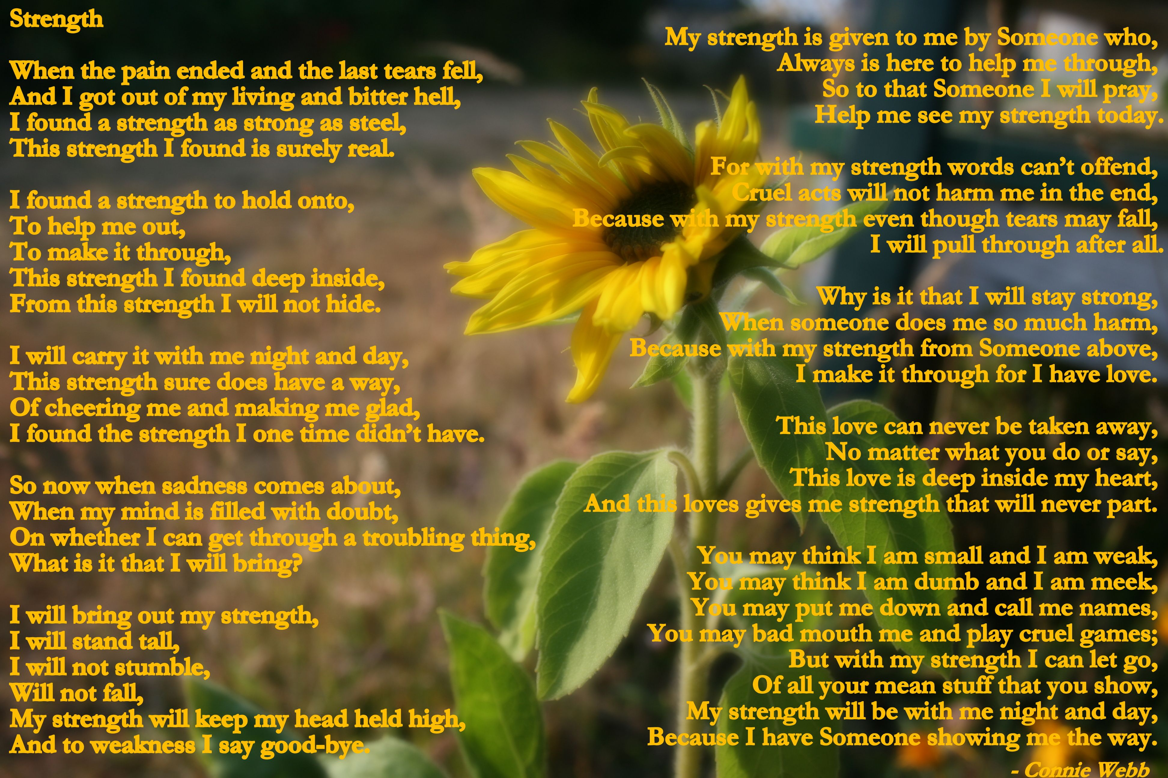 Strength Poem And Photo By Connie Webb