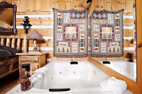 Rocky Raccoon 1 Bedroom Cabin In Sevierville Best Lodging In