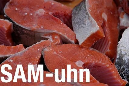 Salmon or Samuhn | Learn English with Demi