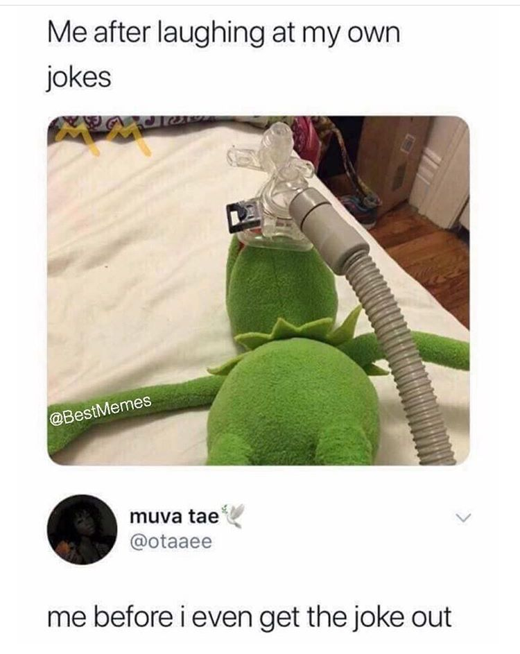 Me After Laughing At My Own Jokes Crazy Funny Memes Stupid Funny Memes Stupid Memes