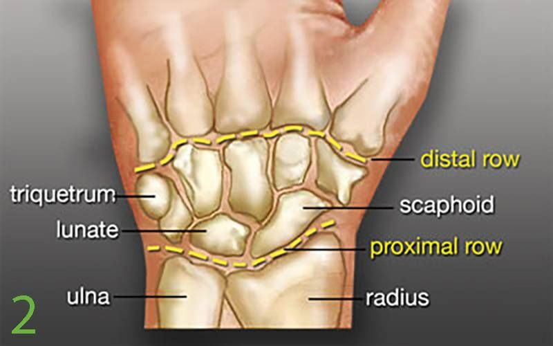 Carpal Tunnel Syndrome Revisited Carpal Tunnel And Surgery