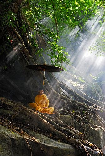 Buddhist Monk In Thailand