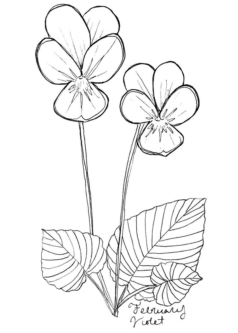 13+ Awesome February flower tattoo black and white ideas
