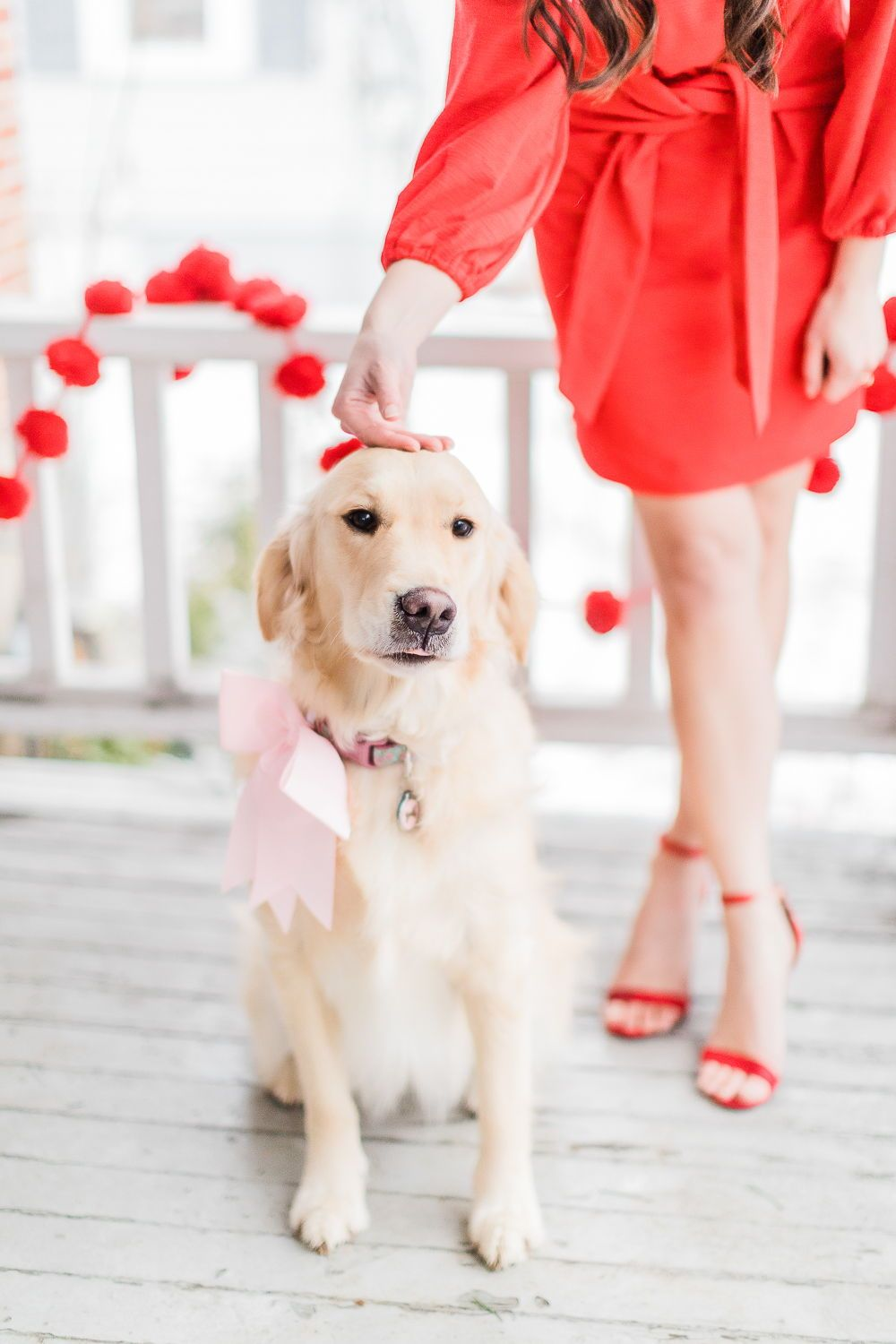 Valentine S Day Dog Picture 10 Valentine S Day Date Night Outfit Ideas In 2020 Valentines Day Dog Valentines Day History Valentine S Day Outfit