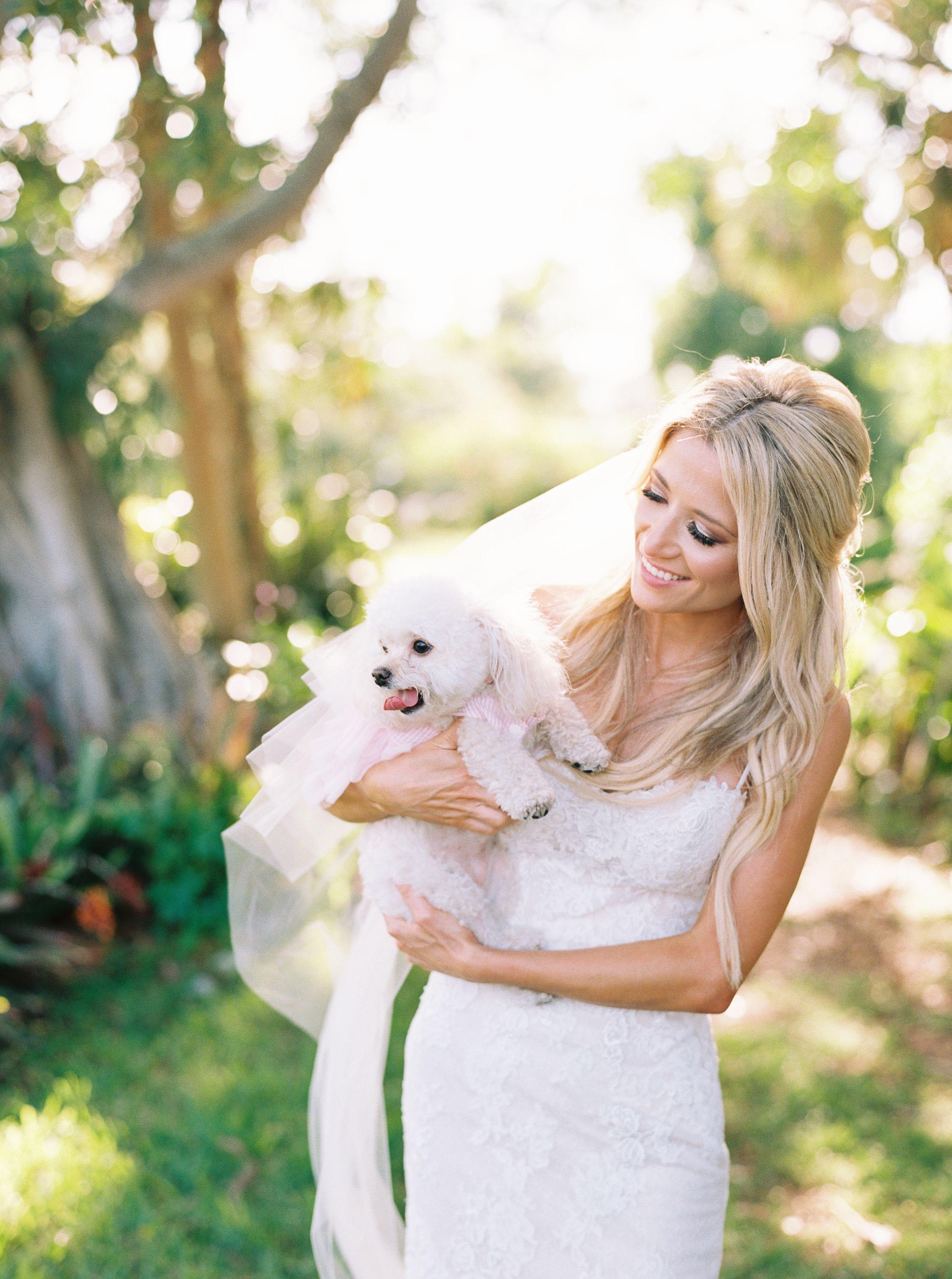 Bride with puppy, bridal portrait with dog, sarasota fine