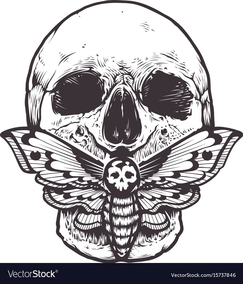Skull With Deaths Head Hawk Moth Sitting On His Mouth Tattoo Style Graphic Design Monochrome Vect Moth Tattoo Design Death Moth Tattoo Death Head Moth Tattoo