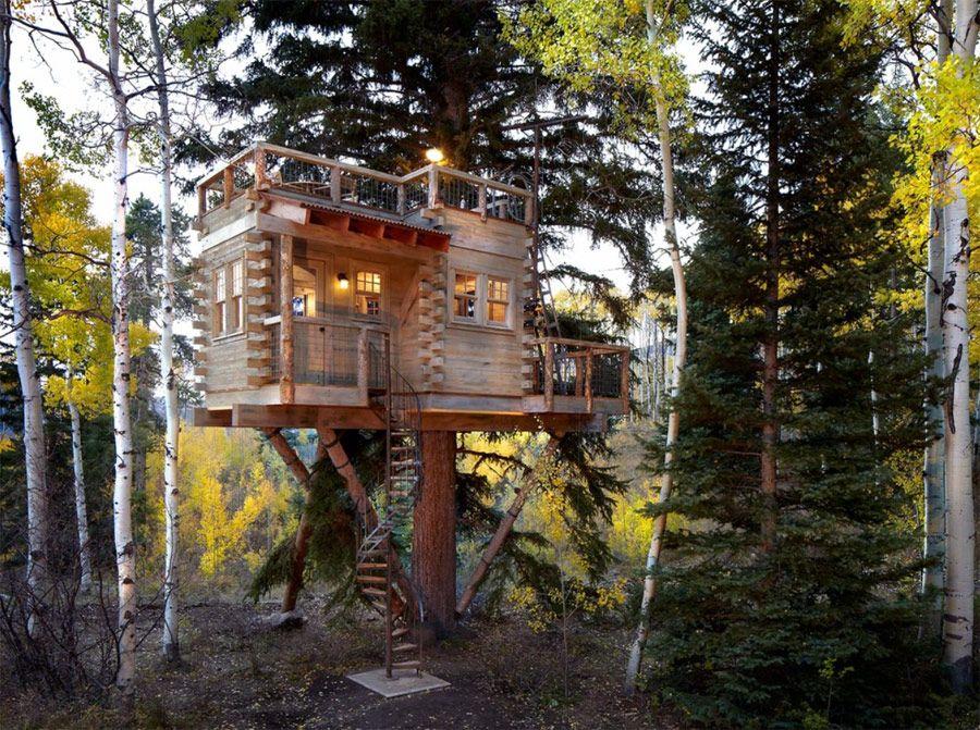 6x Inspirerende Boomhutten : Denver treehouse 1 oh wow! outbuilding pinterest boomhut