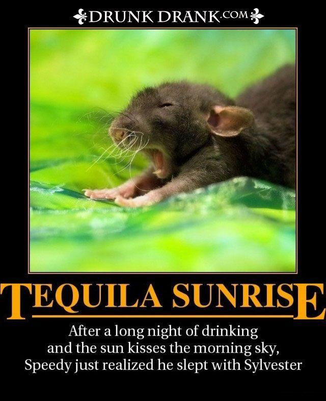 Tequila Sunrise - http://www.drunkdrank.com/motivational-2/tequila-sunrise/