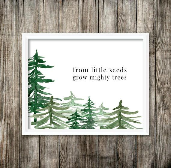 From Little Seeds Grow Mighty Trees Watercolor Printable  - Digital Printable from Live A Little Wilder Print Shop