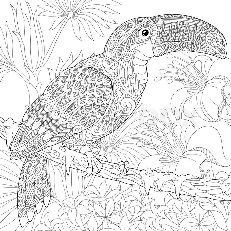 stock vector of stylized toucan bird sitting on palm tree branch among hibiscus flowers coloring book