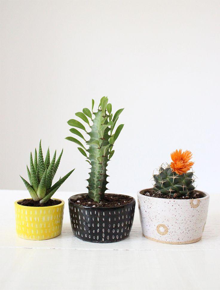 Small cactus and succulent handmade ceramic planters from Baba Souk - Small Cactus And Succulent Handmade Ceramic Planters From Baba