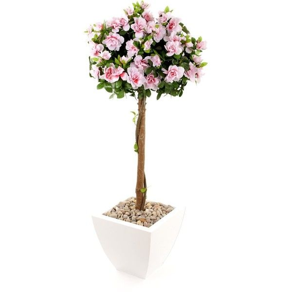 Closer To Nature Artificial 3ft 6 Pink Azalea Tree Silk 110 Liked On Polyvore Featuring Home Outdoors Plants