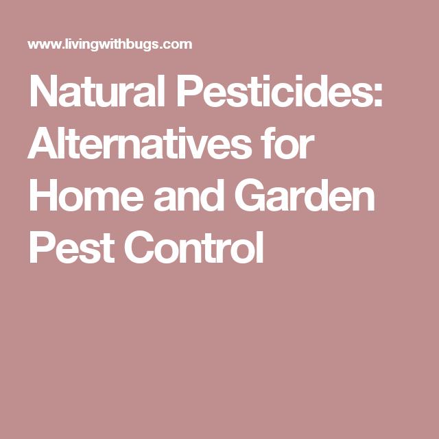 Natural Pesticides: Alternatives For Home And Garden Pest Control