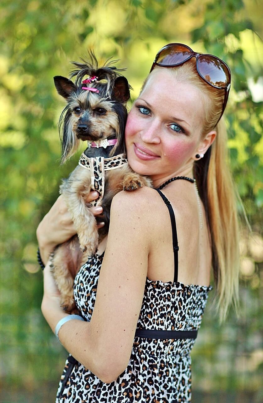 Pet Insurance That Covers Pre Existing Conditions Pet Insurance