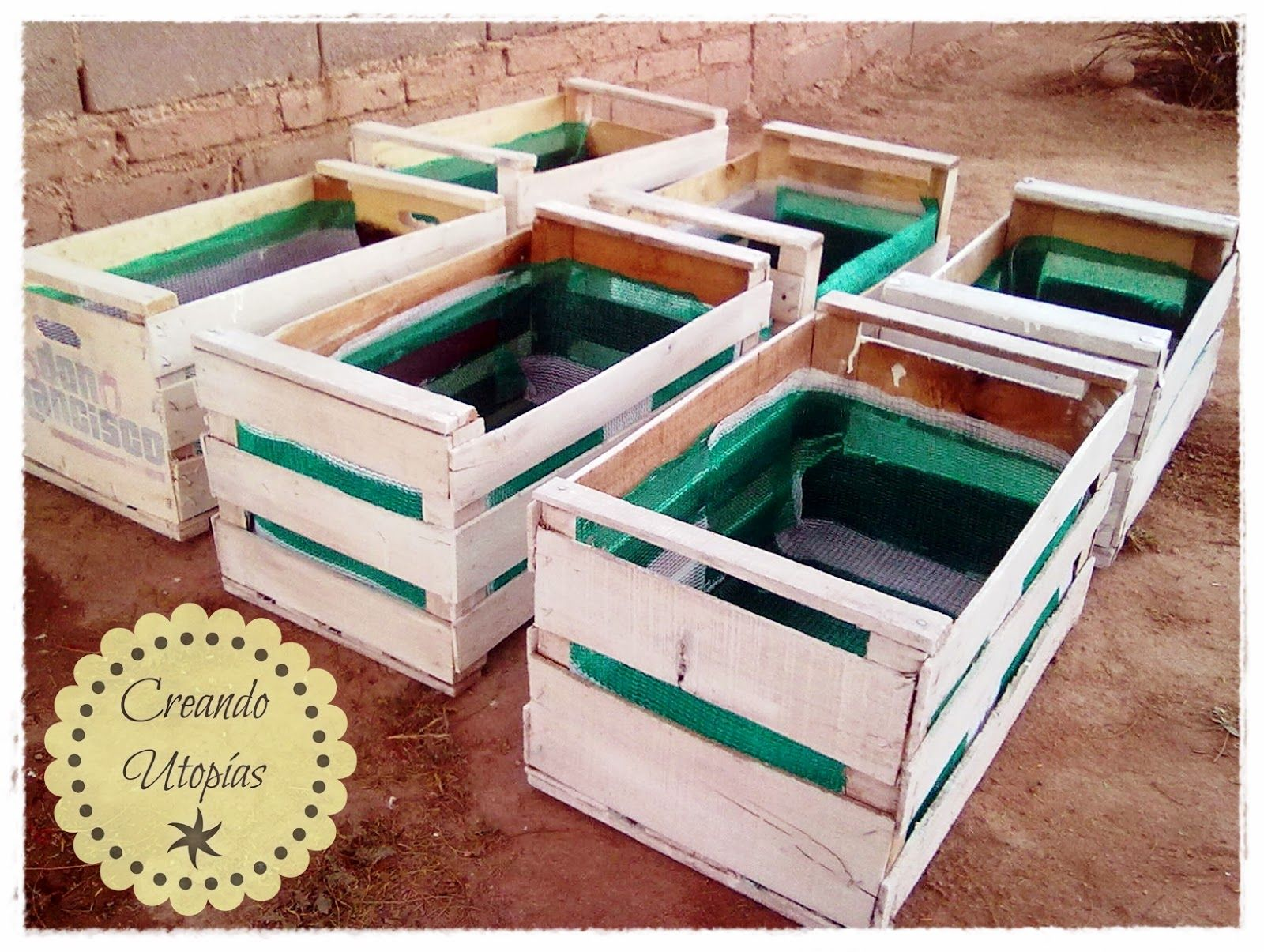 Huerta En Cajon Para Colorear Buscar Con Google Huerta
