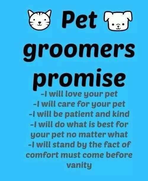 This Should Be Something All Groomers Pride Themselves As Following Since We Pet Parents Trust The Dog Grooming Business Dog Grooming Shop Pet Grooming Salon