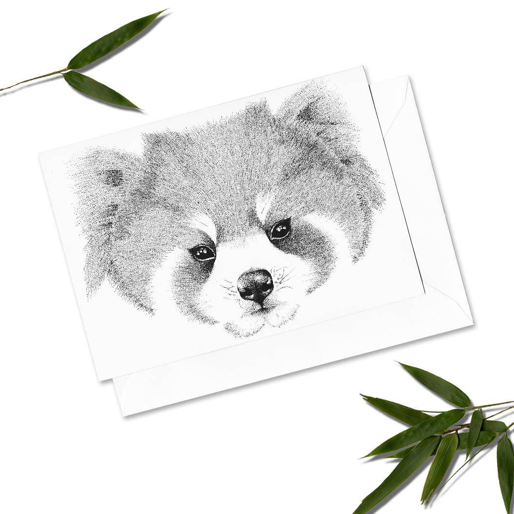 Red panda a6 greeting card small print of my red panda red panda a6 greeting card small print of my red panda stippling drawing kristyandbryce Image collections
