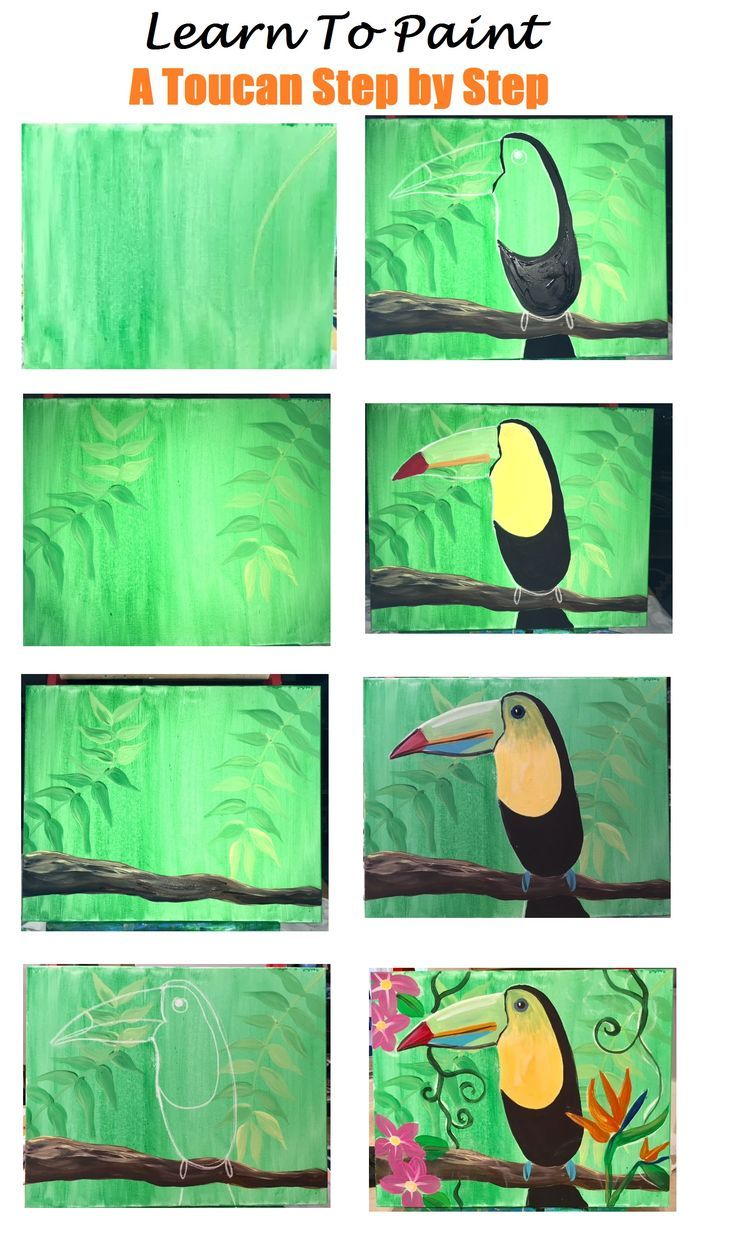 Photo of Step by step instructions for painting. How do you paint a toucan? Acrylic paint on …