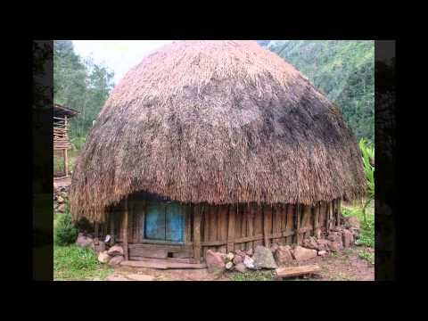 Traditional House Of Indonesia Traditional House Types Of Houses Indonesian House