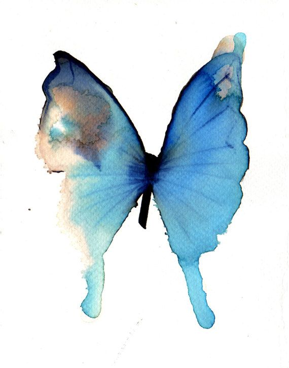 Light Ultramarine Blue Butterfly With Grey And By Metamorphosing